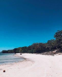 cebu island hopping tour